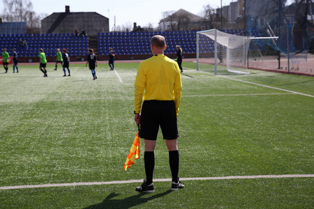 linesman: Linesman with flag  on the football field at sunny day