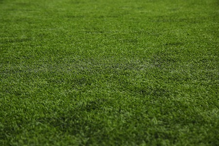 football on the field: Pattern of artificial green grass. Grass texture background