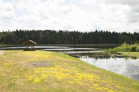 arbor: Arbor on the coast of the lake