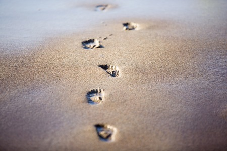 footprint sand: footprints in the sand of the sea
