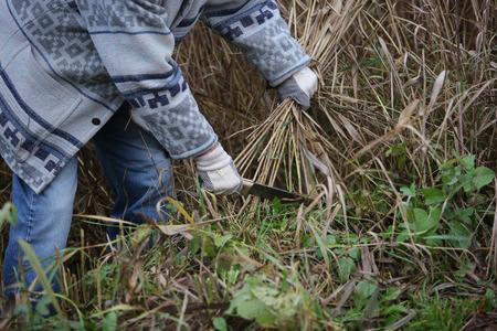 machete: man with a machete cuts the grass