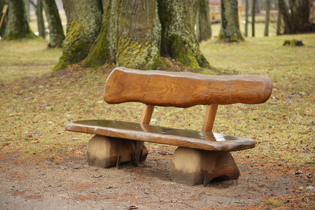 solitariness: Wet wooden bench in the park - autumn