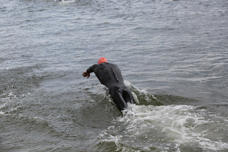 wetsuit: Diving athlete in wetsuit in triathlon competition