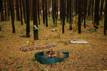 cremation: Grave Decorated With Stones in The Pet Cemetery