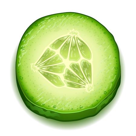 cucumber slice: Fresh cucumber slice isolated on white background