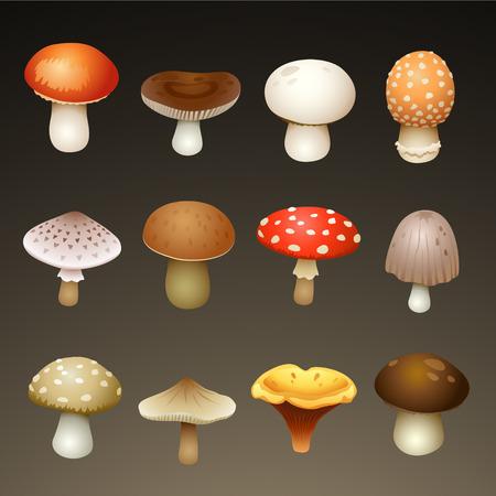 mushrooms Ilustração