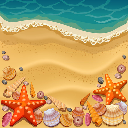 sunny beach: shells on the beach Illustration