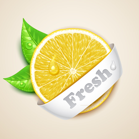 fresh lemon Stock Vector - 36739293