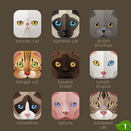 zoologico: Caras de animales para los iconos del App-gatos establecen Vectores