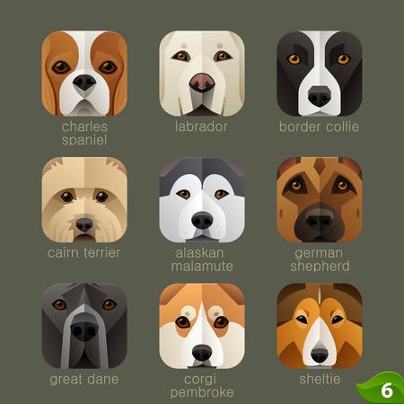 animaux zoo: visages des animaux pour les icônes d'application chiens mis 5
