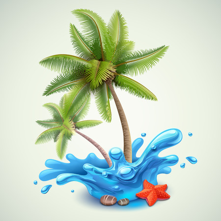 starfish beach: Water splash with palms Illustration