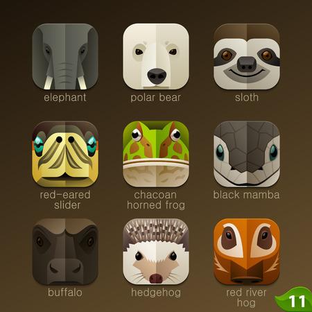 rana caricatura: Enfrenta Animal para aplicaciones iconos-set 11