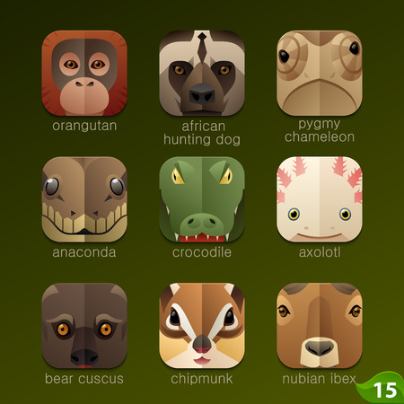 pygmy: Animal faces for app icons-set 15