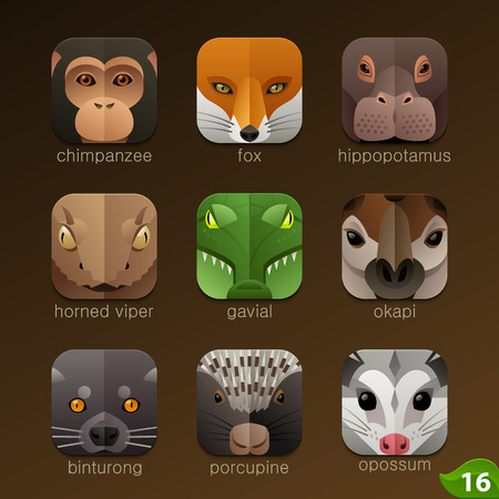 jungle animal: Enfrenta Animal para aplicaciones iconos-set 16 Vectores