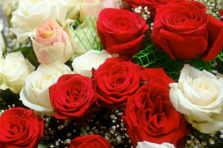 Close up of a bouquet rose photo