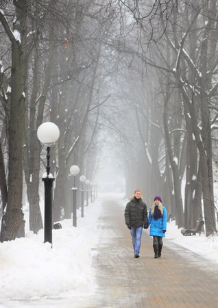 Young adult couple in the park. Winter. Stock Photo - 8653638