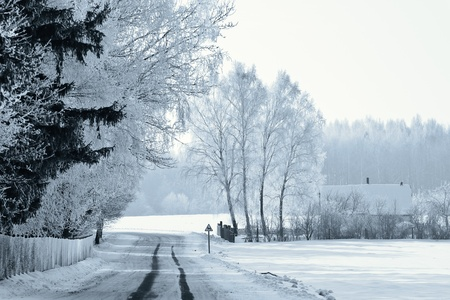 A winter road, just after the snowfall photo