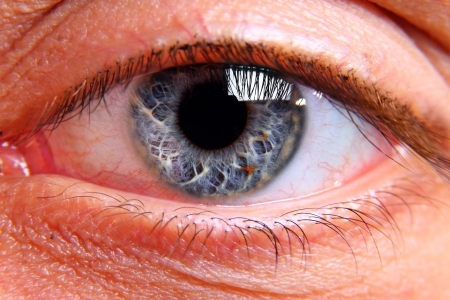 close eye: Close up on human eye