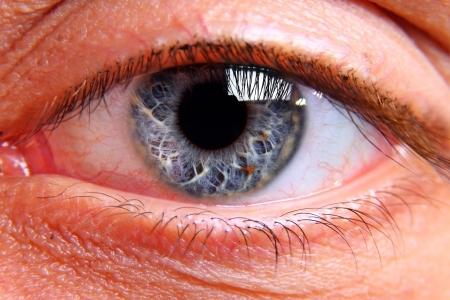 seeing: Close up on human eye