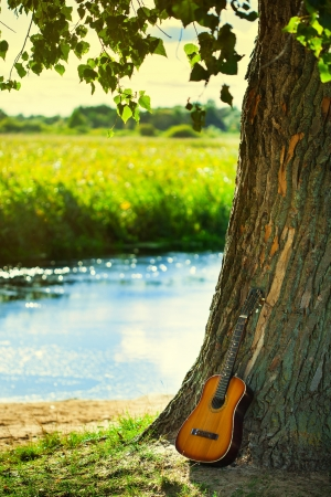 Guitarra ac�stica contra un �rbol photo