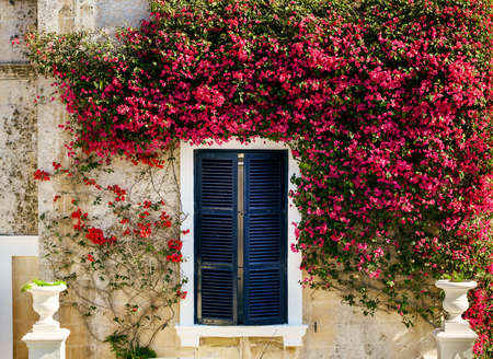 old doors: Old windows doors and balconies on Malta Stock Photo
