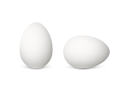 Two vector realistic white eggs. Isolated eggs on white background. 版權商用圖片 - 71028038