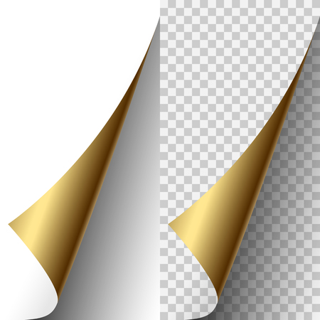 Golden metallic vector realistic paper page corner curled up. Paper sheet folded with soft shadows on light transparent background. 3d illustration template for your design.