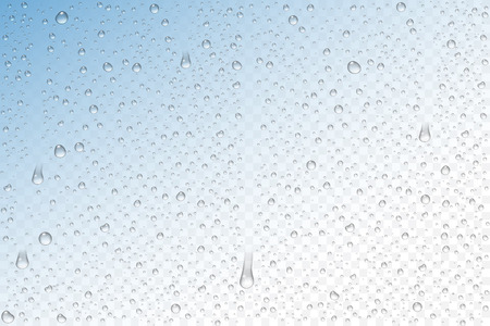Vector realistic water drops condensed on transparent background. Rain droplets without shadows for transparent surface. Pure water bubbles isolated.