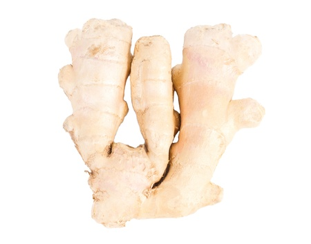 pungent: A section of the pungent aromatic rhizome of fresh root ginger used as a seasoning and spice in cooking isolated on white