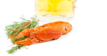 Delicious cooked prawns with large pincers together with a sprig of fresh dill on a white background photo
