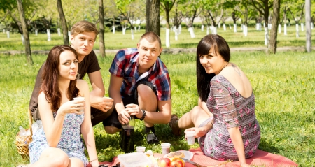 College friends having a picnic in the park with two attractive couples sitting together on a rug enjoying a healthy meal photo