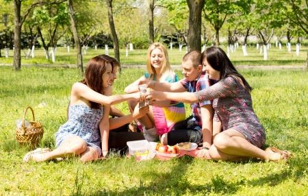 Image of a group of attractive young friends playing together and enjoying on a picnic outside. photo