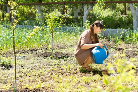 wetting: Image of a beautiful woman sitting and watering the plants in the garden with a watering can.