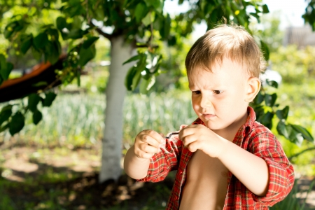 Little boy with a puzzled expression holding earthworm in his hands that he is studying intently as he stands in the garden photo