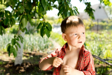 Portrait of a small boy playing in the garden standing in sunshine looking off to the right of the frame photo