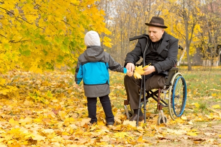 Little boy with his handicapped grandfather who is confined to a wheelchair playing amongst the colourful yellow autumn leaves in a beautiful woodland