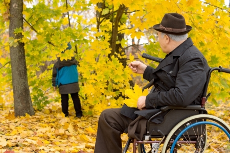 amputated: Senior disabled man with one leg amputated in a wheelchair sitting in colourful yellow fall woodland watching a small child play amongst the trees