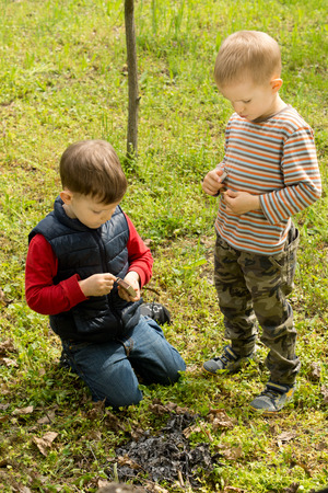 Two small boys putting out a smouldering fire leaving a mound of burnt charcoal in the green grass after they had lit a small campfire Stock Photo - 27748280