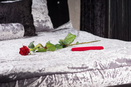 counterpane: Romantic gift and single long stemmed red rose in a bedroom symbolising love for celebrating an anniversary or Valentines Day with a loved one