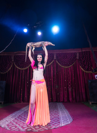 stage costume: Full Length Portrait of Exotic Dark Haired Belly Dancer Wearing Bright Costume Holding Small Alligator Above Head While Standing on Stage with Red Curtain
