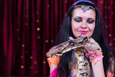 pet  animal: Close Up Portrait of Exotic Dark Haired Snake Charmer Holding Large Snake on Stage with Red Curtain in Background and Copy Space Stock Photo