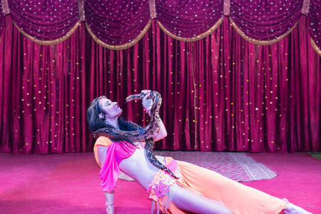 pet  animal: Full Length Profile of Exotic Dark Haired Snake Charmer Face to Face with Large Snake Lying on Stage with Red Curtain in Background
