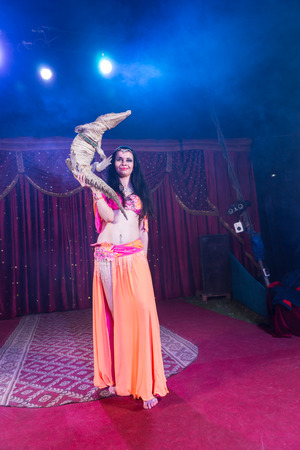 entertainers: Full Length Portrait of Exotic Dark Haired Belly Dancer Wearing Bright Costume Balancing Small Crocodile on One Hand While Standing on Stage