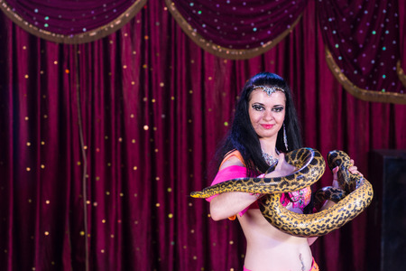 dark haired: Exotic Dark Haired Belly Dancer Holding Large Snake on Stage with Red Curtain in Background