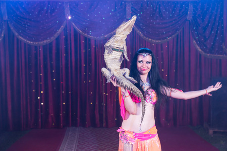 exotic dancer: Portrait of Exotic Dark Haired Belly Dancer Wearing Bright Costume Balancing Small Crocodile on One Hand While Standing on Stage