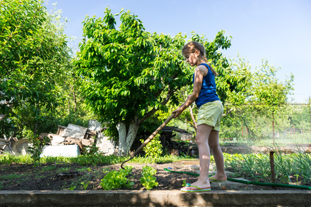 self sufficient: Young girl standing weeding with a hoe in a neatly laid out vegetable garden in a backyard or on a smallholding for a self sufficient lifestyle