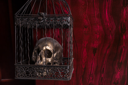 malevolent: Close Up of Shiny Gothic Skull in Ornate Metal Cage in front of Red Background with Copy Space Stock Photo