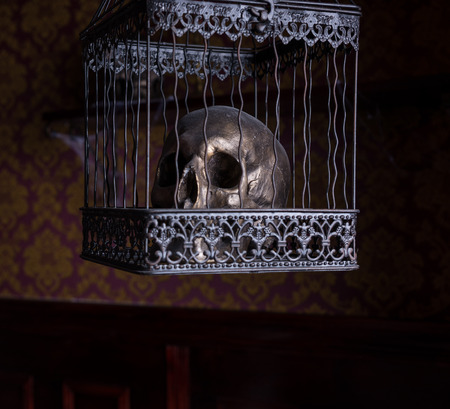 malevolent: Close Up of Shiny Gothic Skull in Ornate Metal Cage in Room with Patterned Wallpaper, Used for Witchcraft and Casting Spells