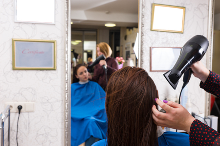blow dryer: Close Up Rear View of Stylist Using Blow Dryer to Dry Wet Hair of Brunette Woman Seated in Chair in Salon with Blurred Reflection in Background Mirror