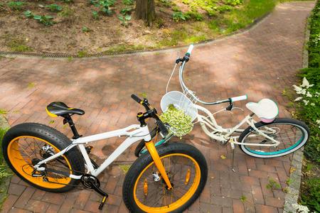 growing flowers: Pair of bikes facing each other on brick laid sidewalk between low growing flowers in park in the shade Stock Photo